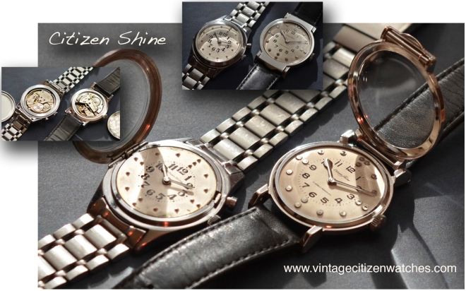 citizen shine braile watch