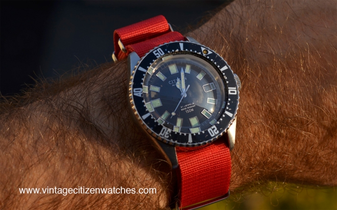 citizen-lost-in-the-ocean-australia-52-0110-diver-red-nato