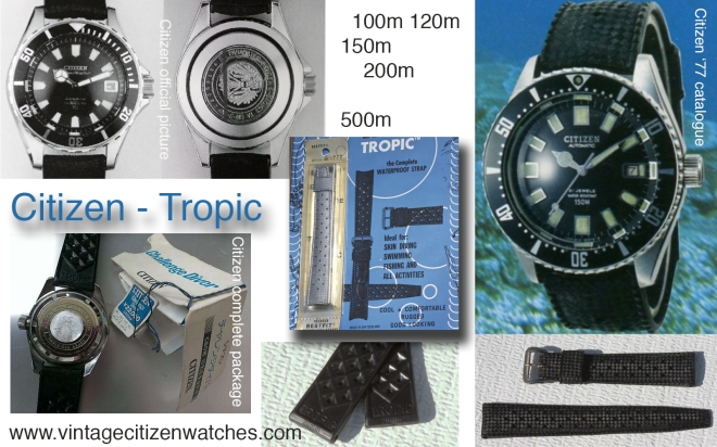 vintage citizen diving tropic strap